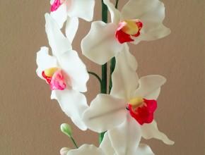Gebundene Orchideenblüten