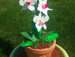 Fertige Orchideen Torte