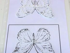 Schmetterling mit Royal Icing gespritzt